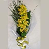 Orquídea Cimbidium